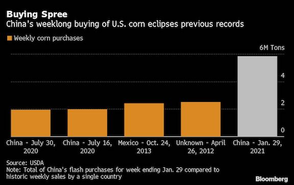 China set to exceed WTO quota in biggest US corn purchase